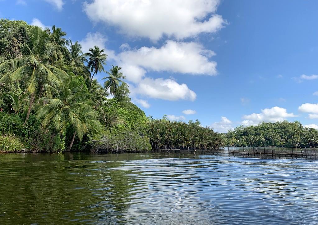 Sri Lanka 769 Юг  Шри-Ланки Места для посещения на юге Шри-Ланки 44766991115 891c72f5b6 b