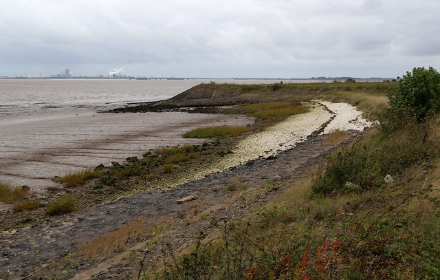 The Humber near Goxhill Haven