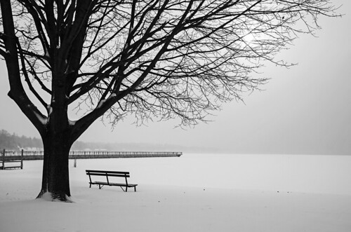 bw blackandwhite monochrome mono cold arctic frozen mlk chilly snow wind belowzero snowstorm january skaneateles flx fingerlakes canon 2019