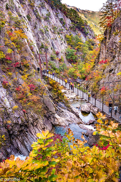 Suspension Bridge along the Biryong Fall Trail in Seoraksan National Park (South Korea)