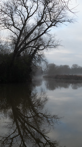 River Avon with reflections, misty winter morning