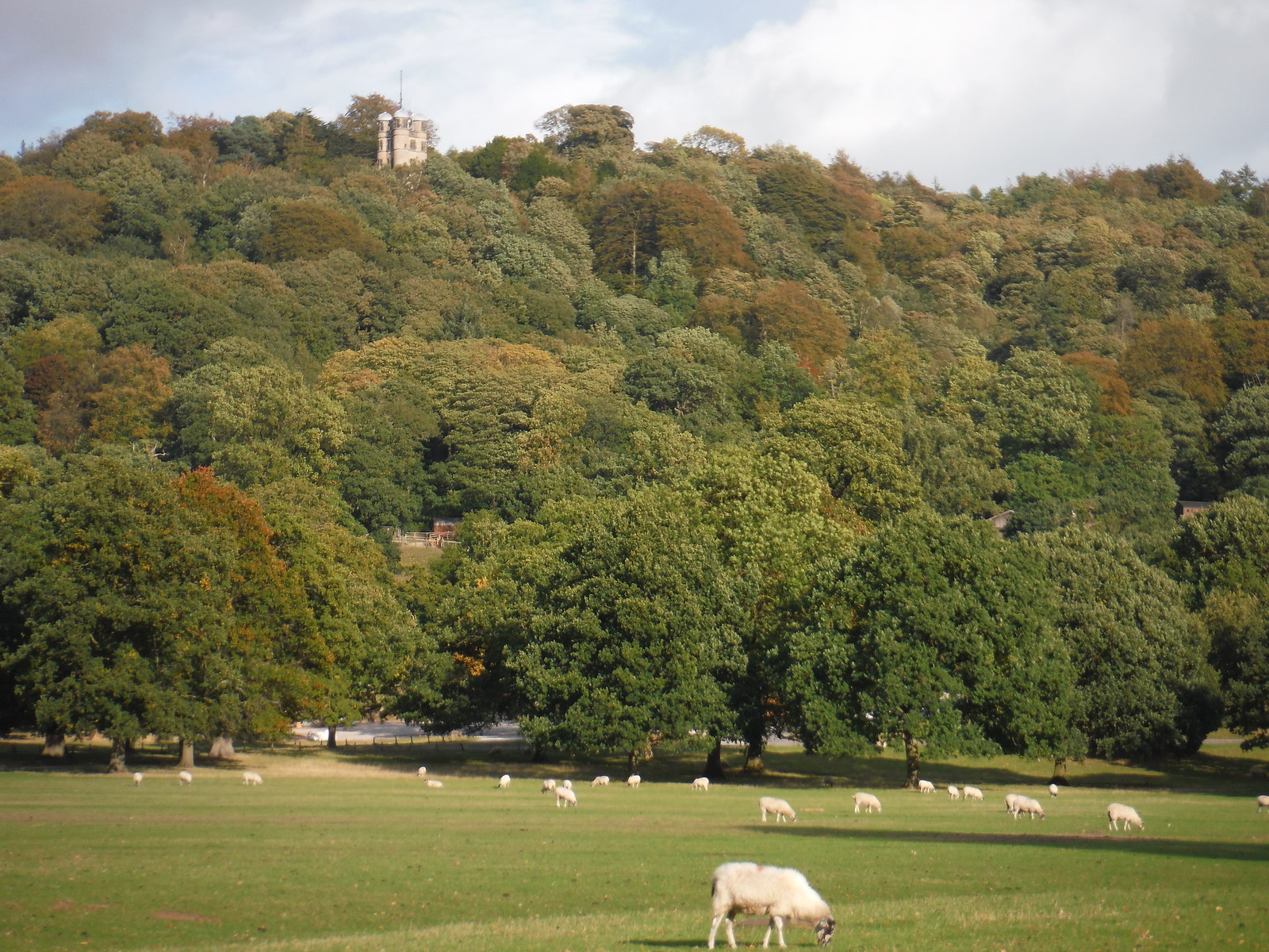 Stand Wood and the Hunting Tower, Chatsworth Estate SWC Walk 322 - Grindleford Circular (via Chatsworth House)