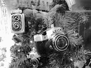 Photographers Christmas Dream   by rgiw
