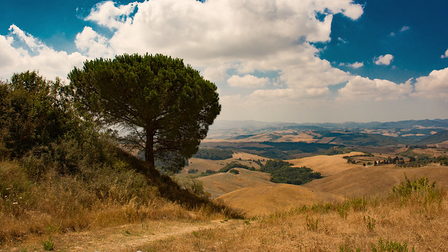 Countryside - Tuscany