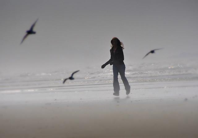 CANADA tofino plage