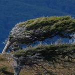 Sierra Valdivieso Trekking28
