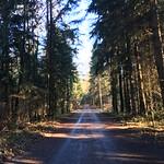 2018_12_12_7_Brücken_Aaretal_Kiesental (128)