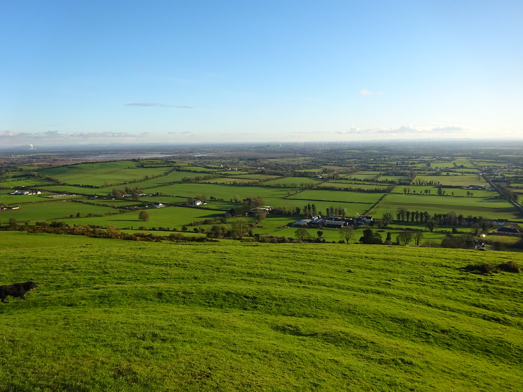 Croghan Hill 3 February 2019