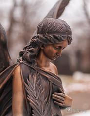 Cemetery Angel 7