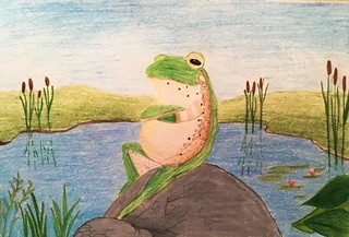Simerjeet-Mudhas-15-yrs-old-Chill-Frog-Jersey-City-NJ-USA