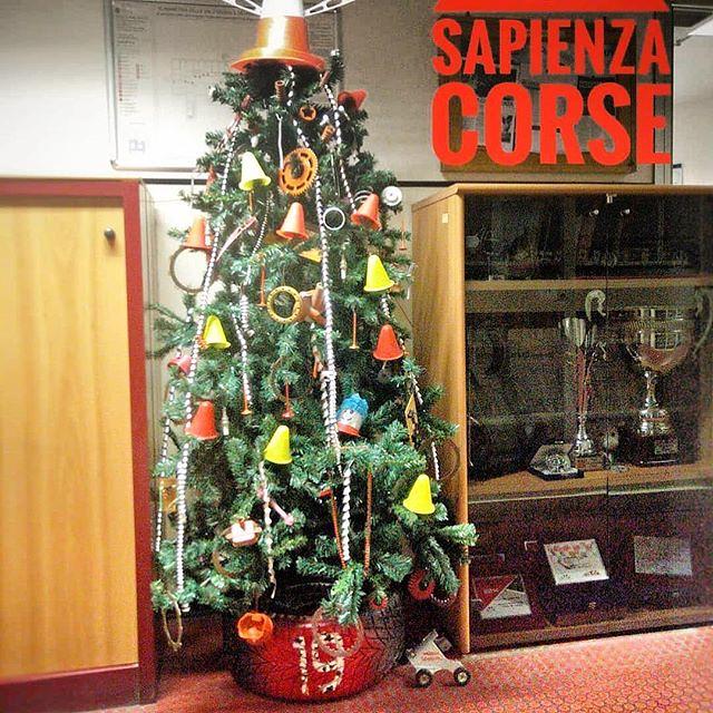 Immagini Del Buongiorno Di Natale.Buongiorno Sapienza Con Una Foto Dell Albero Di Natale De