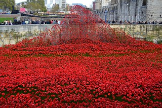 Tower of London on Armistice Day