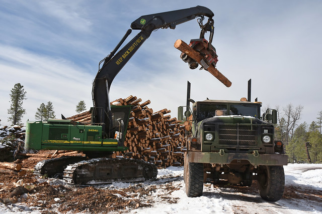 Cougar Park Task Order - Forest Restoration 2018