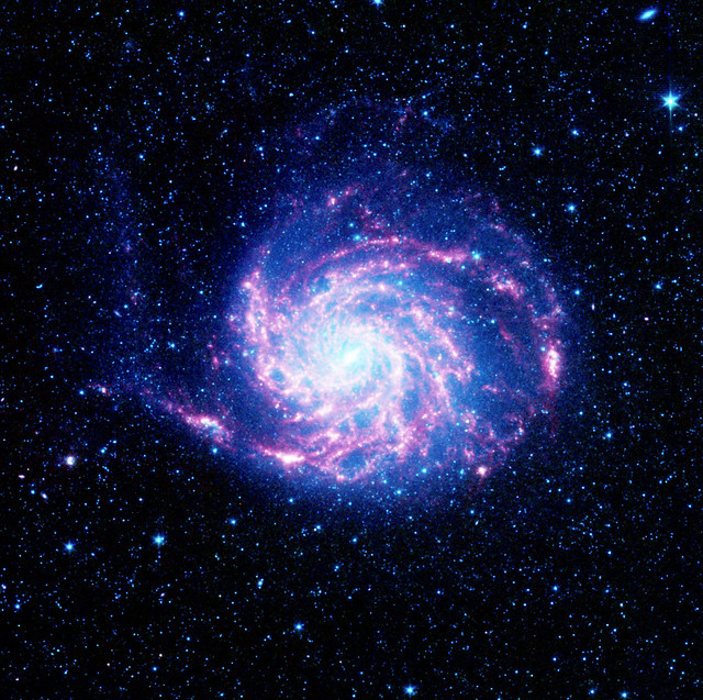 The tangled arms of the Pinwheel galaxy, otherwise known as Messier 101. Original from NASA. Digitally enhanced by rawpixel.