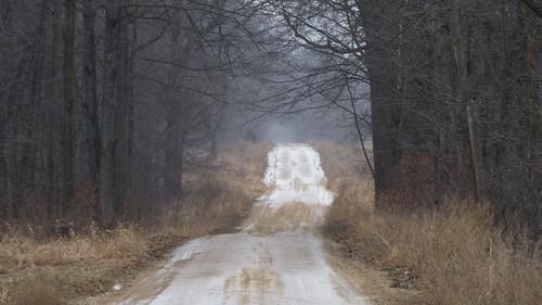 olympus omdem1mkii em1 omd em1ii 2019 winter weather snow tree road dirtroad unpaved 4377 january