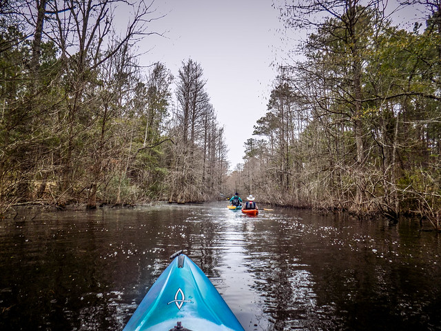 Old Santee Canal-13