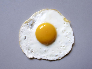 WS1812: Fried Egg- Photo Reference