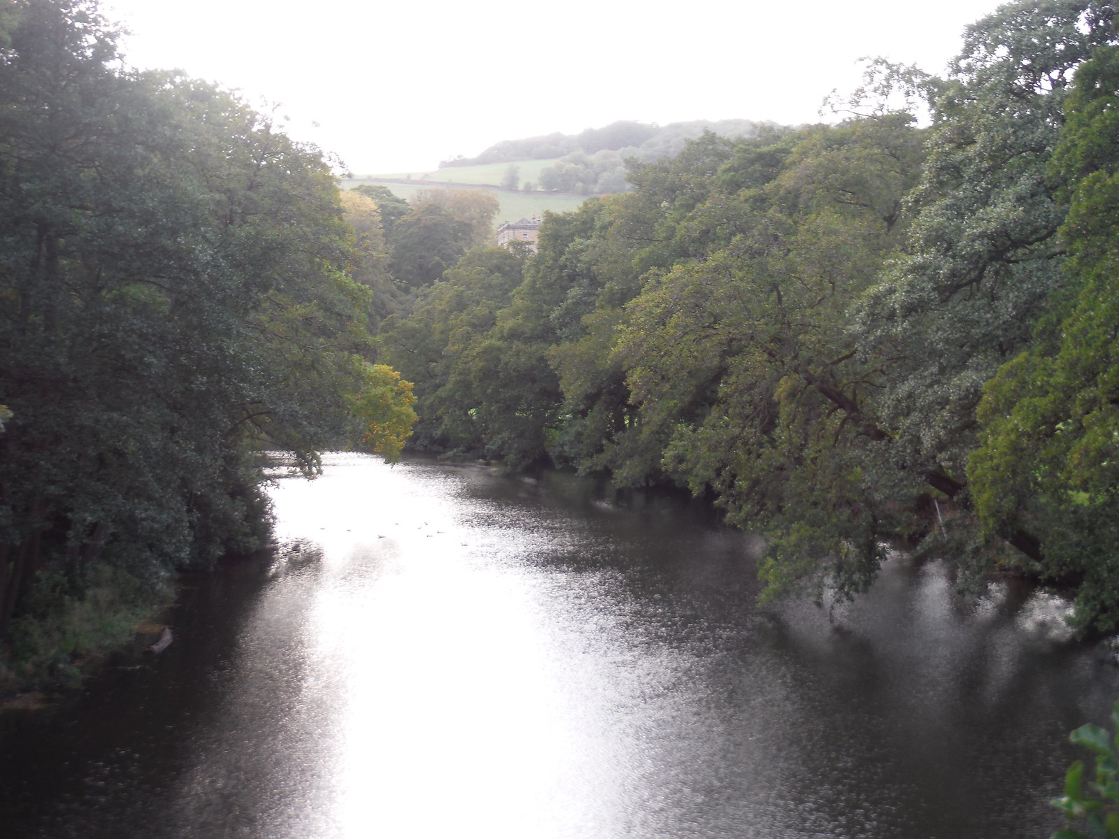 River Derwent, from Froggatt Bridge SWC Walk 322 - Grindleford Circular (via Chatsworth House)