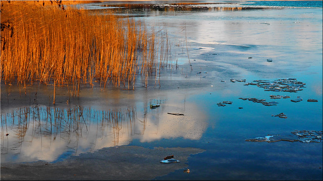 Reflections on the wintry lake