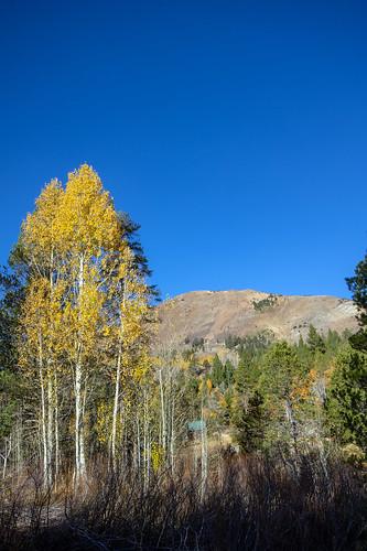 Autumn in the Sierras   by RuggyBearLA