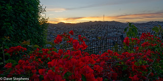 Sutro Tower Sunset From Potrero Hill Community Garden | by dcstep