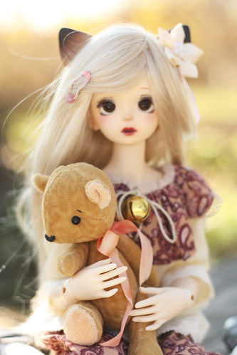 IMG_8336a   by asagao_77