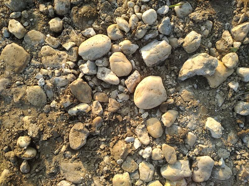 Ground Texture 12