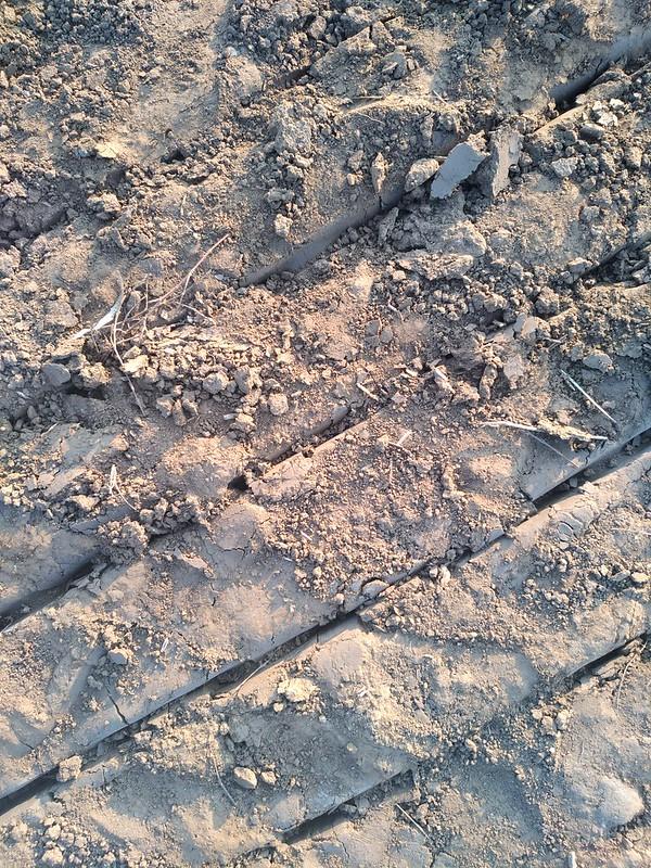 Ground Texture 5