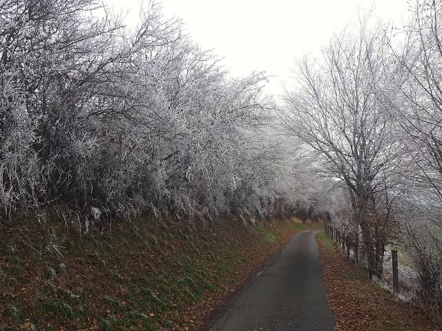 Dans les monts, l'hiver arrive..