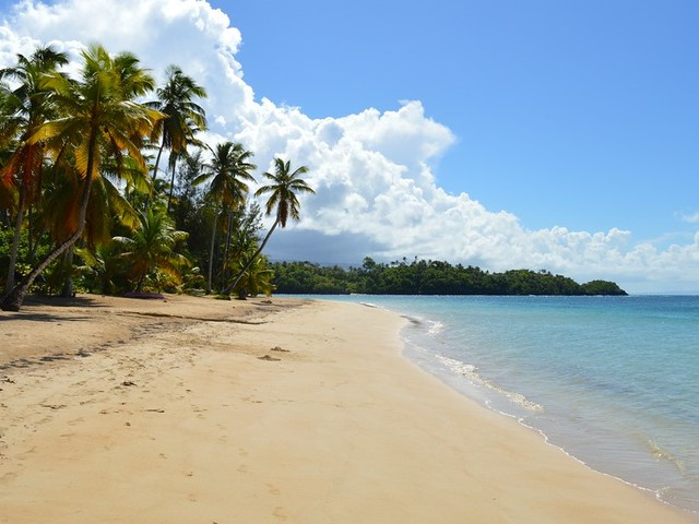 Playa Las Ballenas