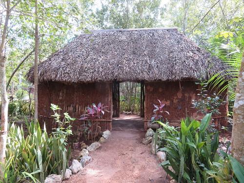 Cenote Maya