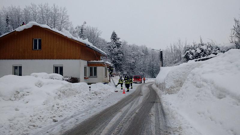 SchneedruckRosenau-8