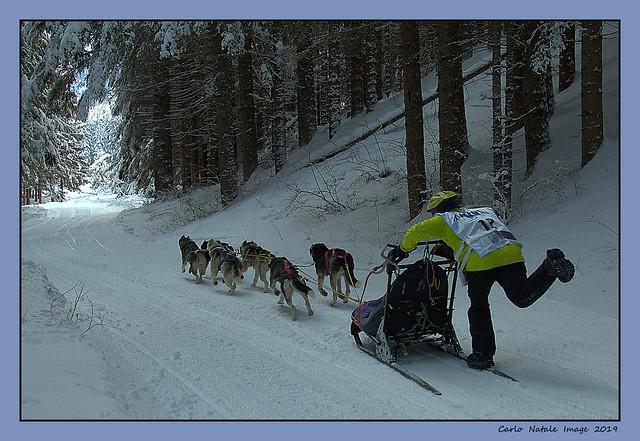 Alpen Trail - Braies  - 7/2/19 - 4
