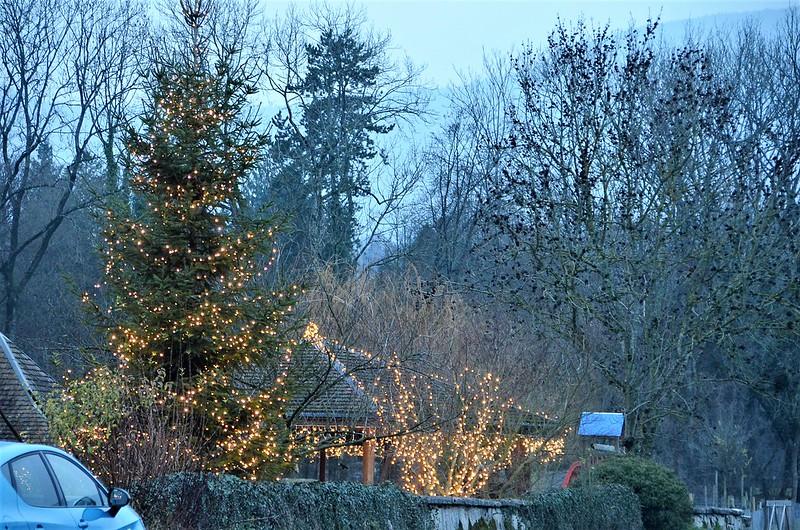 Christmas Tree Lights 05.12.2018