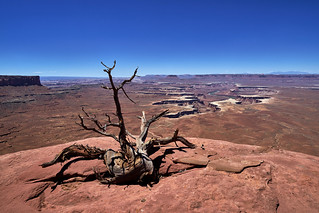 Canyonlands National Park, Utah  - I wish you all a Happy New Year, my Dear Friends!!! | by W_von_S