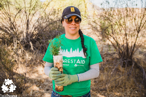 TreePeople Tree Planting at San Francisquito Canyon