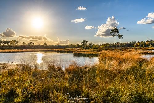 hatertsevennen nl nederland netherlands autumn bos herfst landscape landschap vennen overasselt gelderland zonsondergang sunset