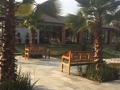 Bancos de madeira para jardins