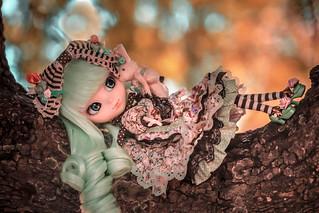 Alice du Jardin | by iamannamaldita