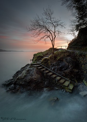 staircase babbacombe tree rocks seascape sea sky sunrise amateur canon canondslr coast devon