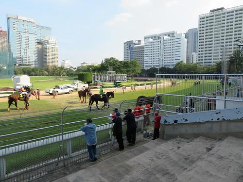 ロイヤルバンコクスポーツクラブの出走馬がバックヤードに入る