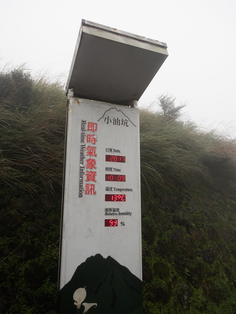It is 13 degree Celsius with 99% relative humidity at Yangmingshan National Park