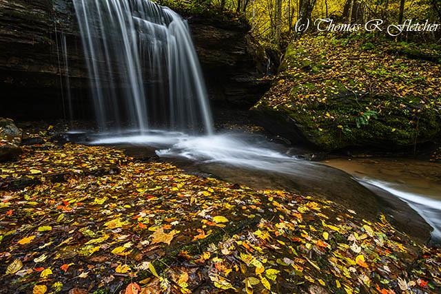 November Waterfall