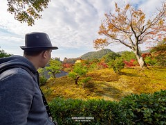 Kyoto Autum first two week of Nov, 2018