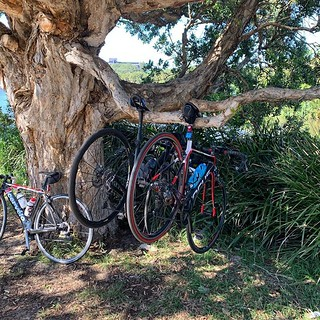 Australian cycling hacks with @sydneycyclingclub Thanks for the ride! | by Alex Cheek