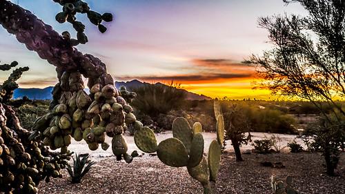 tucson arizona unitedstates
