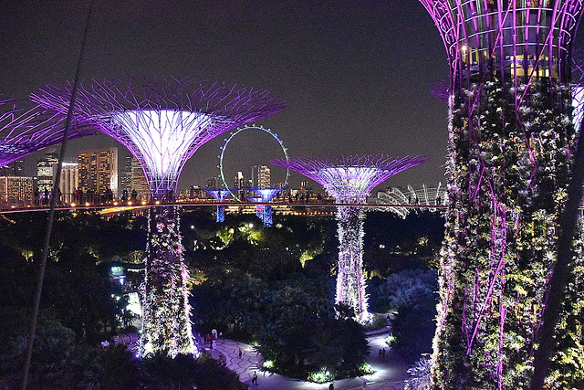 Super Tree Grove, Garden By The Bay, Singapore.