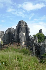 Karst de Shilin