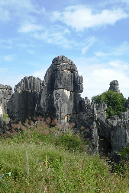 Shilin Stone Forest Kunming