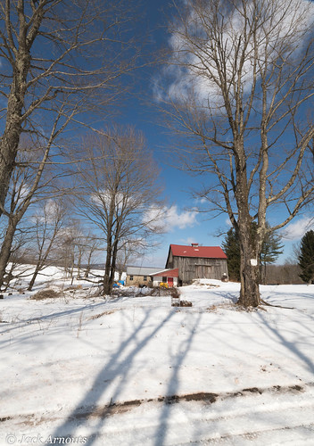 trees usa pa landscape vacations travel old scenic pennsylvania sky farm vacation historic barn wayne winter snow cold